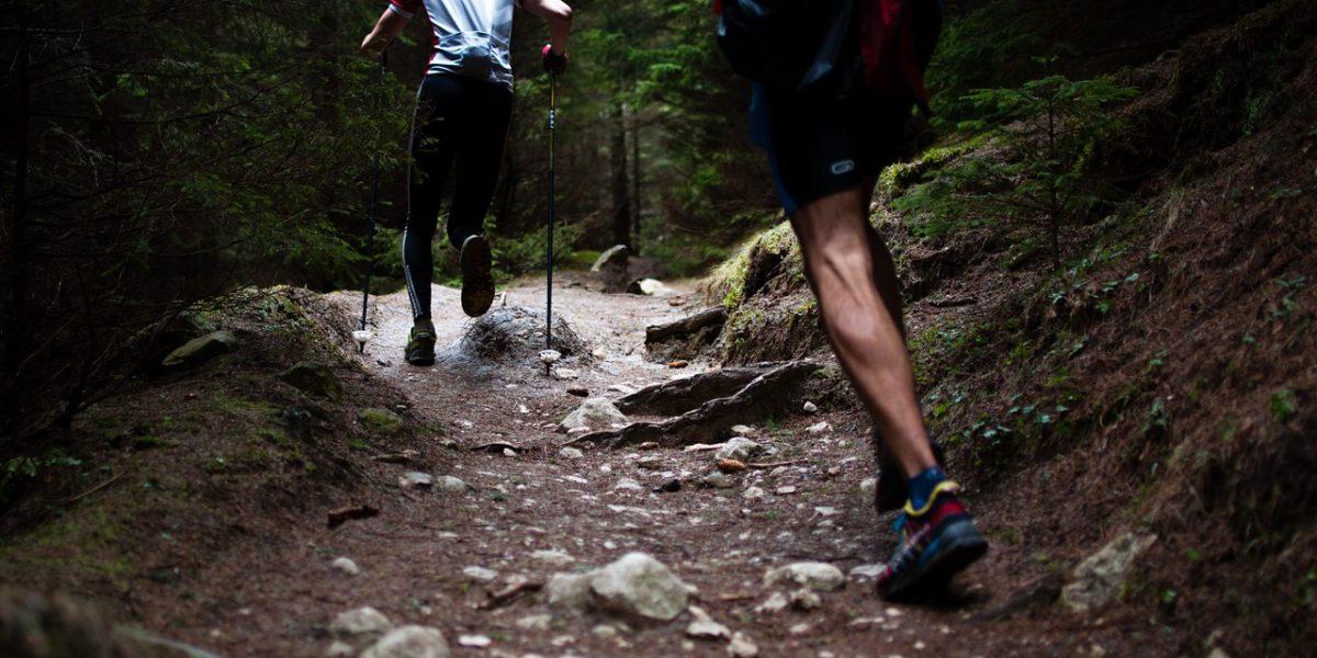 running route brisbane